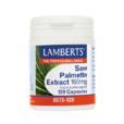Product_related_saw-palmetto-extract_low