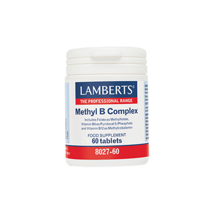 Product_main_methylb_complex